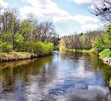 Whitemouth River Park by Vickie Emms