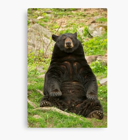 Tough day at the office Canvas Print