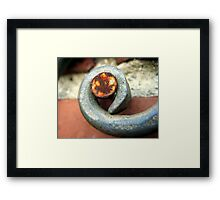 Rusty nail on wrought iron Framed Print
