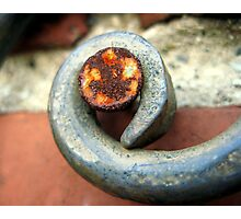Rusty nail on wrought iron Photographic Print
