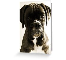 Luthien's Portrait In Sepia -Boxer Dogs Series- Greeting Card