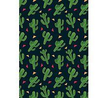 Cactus Fiesta Photographic Print