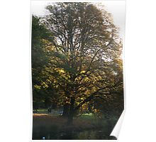 Autum Afternoon Poster