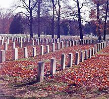 Arlington cemetery by Lee Lee