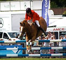 Show Jumper. Ready to land. by Country  Pursuits