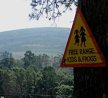 Dangerous kids and frogs by Shaun Swanepoel
