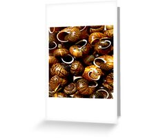 Empty houses Greeting Card
