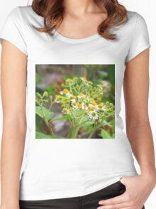 Guatemalan Wild Flowers Women's Fitted Scoop T-Shirt