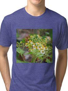 Guatemalan Wild Flowers Tri-blend T-Shirt