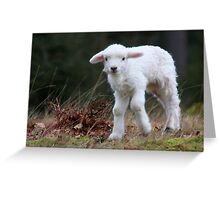 My name is Lente Greeting Card