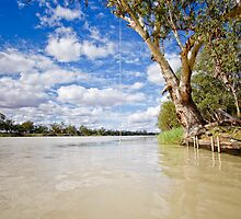 Rope Swing - Morgan, SA by AllshotsImaging