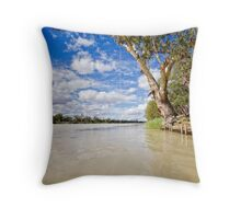 Rope Swing - Morgan, SA Throw Pillow