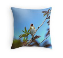 Full Frontal.... Throw Pillow