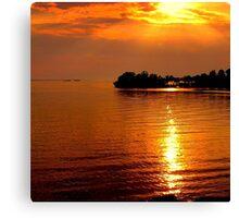 beautiful natural summer sunset Canvas Print