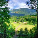 Chilean Farm by Daidalos