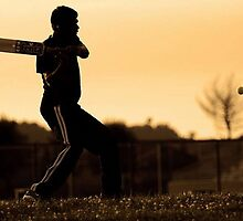cricket bat training for championship by Artworkman