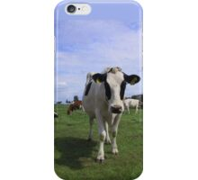 Cows in Germany iPhone Case/Skin
