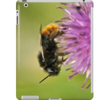 Bee on a thistle macro iPad Case/Skin