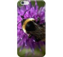 Bumble Bee on a thistle macro iPhone Case/Skin