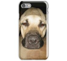 Don't wake sleeping dogs iPhone Case/Skin
