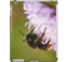 Pollen Covered Bee macro iPad Case/Skin