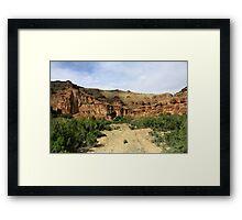 Nine Mile- Canyon,Utah,USA, Framed Print