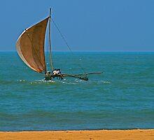 Indian ocean - Yacht in Sri Lanka by Antony Kuzmicich