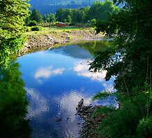River Trancura. Chile. by Daidalos