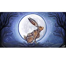 Hare under the moon Photographic Print