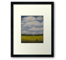 Oil - Canola Fields Framed Print