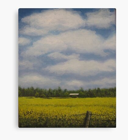 Oil - Canola Fields Canvas Print
