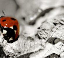 Ladybug on a stick macro Sticker
