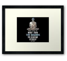 The Cosmos Framed Print