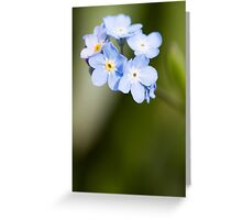 Forget~Me~Not Greeting Card