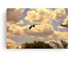Going To The Wire Canvas Print