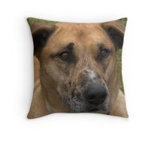Katie the pooch- 3 years old Throw Pillow
