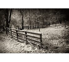 Fence behind the barn Photographic Print