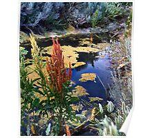 On Parker's Pond Poster