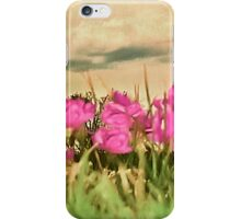 Vintage Nature View iPhone Case/Skin