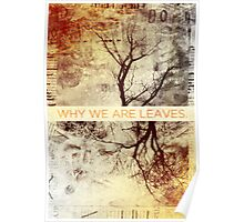 Why We Are Leaves. Poster