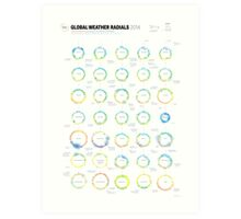 Infographic Weather Radials 2014 Art Print