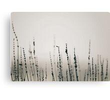 Gathering Canvas Print