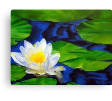 Lily Among the Pads Canvas Print