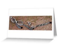 A Trio of Lemurs Greeting Card