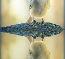 Reflecting Pool Chickadee by Jean Gregory  Evans