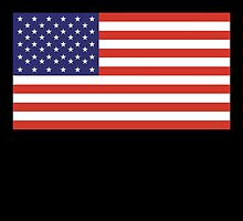 American Flag, America, Stars & Stripes, USA, Americana, Pure & Simple, on BLACK by TOM HILL - Designer