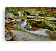 Hell's Hole Creek Canvas Print