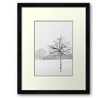 Silent winter Framed Print