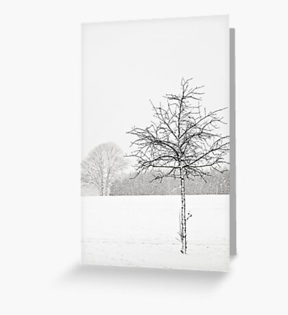 Silent winter Greeting Card