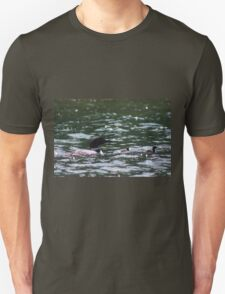 Loon with Babies 1 T-Shirt